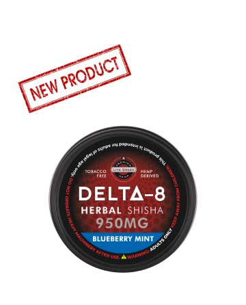 Delta 8 Shisha Blueberry Mint 950mg